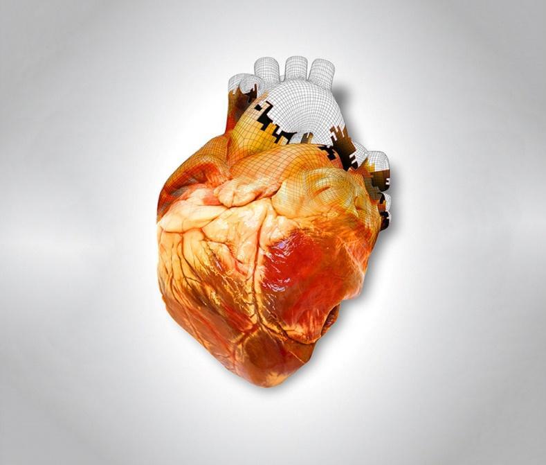 http://www.popsci.com/sites/popsci.com/files/styles/large_1x_/public/import/2013/images/2013/07/heart-printing-main2.jpg?itok=IhD_0ClA